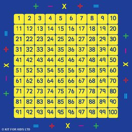 100 Square Counting Grid Mat